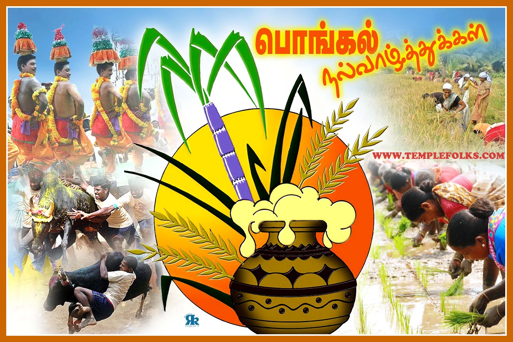 Pongal festival celebration of tamilar thirunal pongal greetings m4hsunfo Gallery