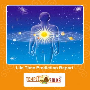 Life Time Prediction Report